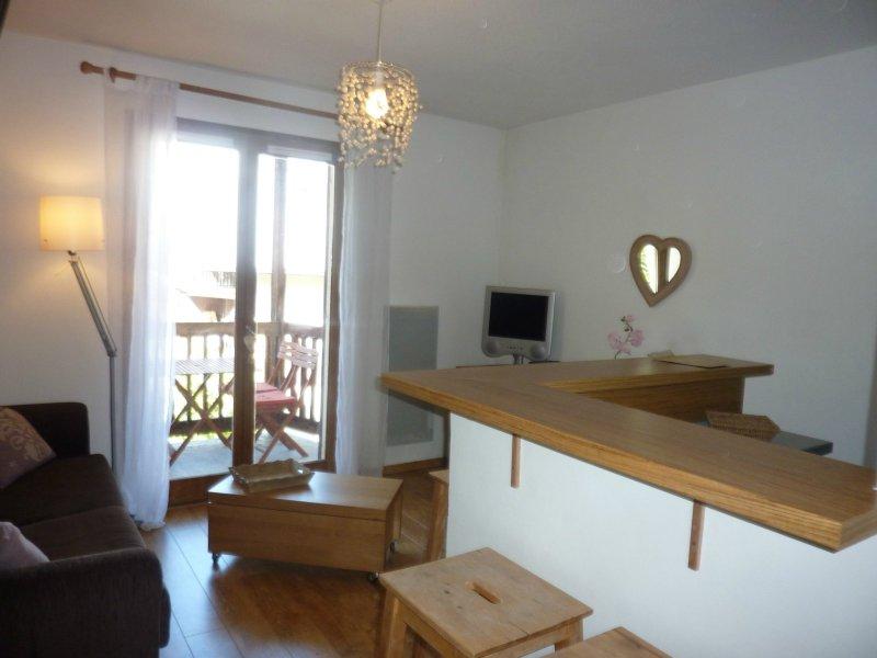 Locationvacance studio 1 pieces de 22 m2 06660 auron 485 superbe studio - Cabinet bourgeois cannes ...