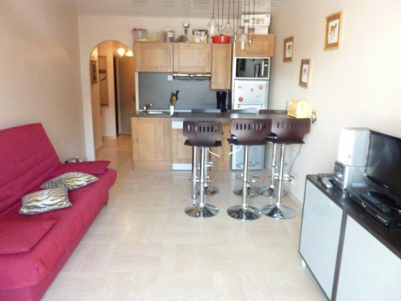 Location appartement 2 pieces de 42 m2 06660 auron 362 beau 2 pieces plein centre - Cabinet bourgeois cannes ...