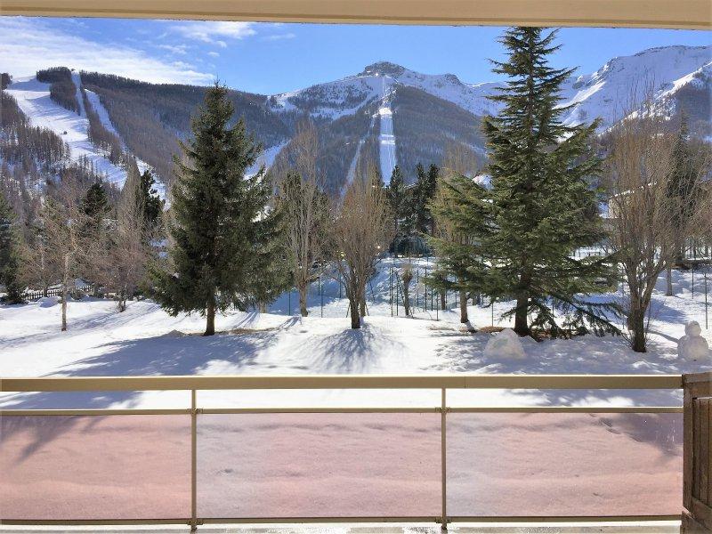 Vente appartement 1 pieces de 32 m2 06660 auron 4249 dans superbe residence - Cabinet bourgeois cannes ...